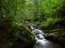 unterwegs im Harz und auf dem Broken_12